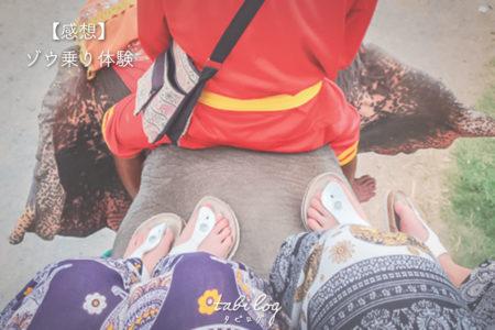 【タイ象乗り感想】アユタヤでゾウ乗り体験!ゾウに乗って公道を歩く!?