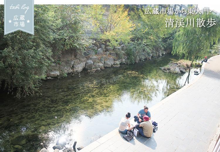 広蔵市場から東大門へ 清渓川散歩