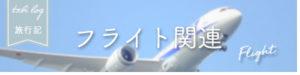 5フライト関連