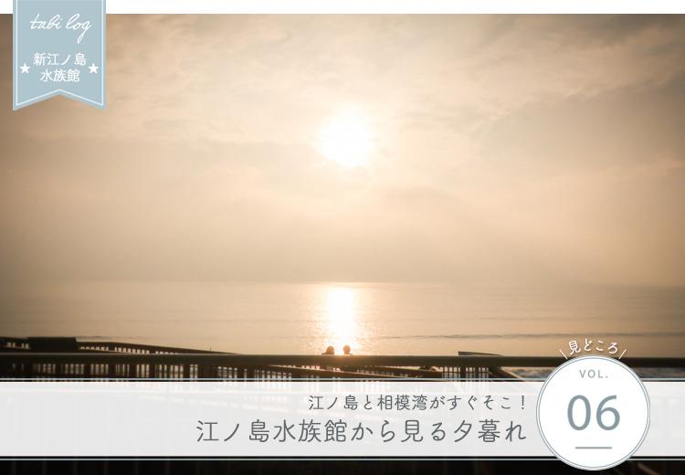 新江ノ島水族館見どころ⑥ 新江ノ島水族館から見る夕暮れ