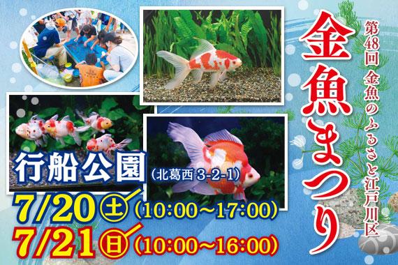 江戸川区特産金魚まつり