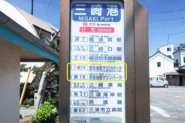 三崎港から油壺マリンパークへ行き方