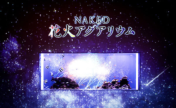 naked花火アクアリウム
