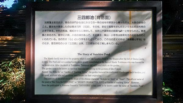 """東大散歩 """"三四郎池"""""""