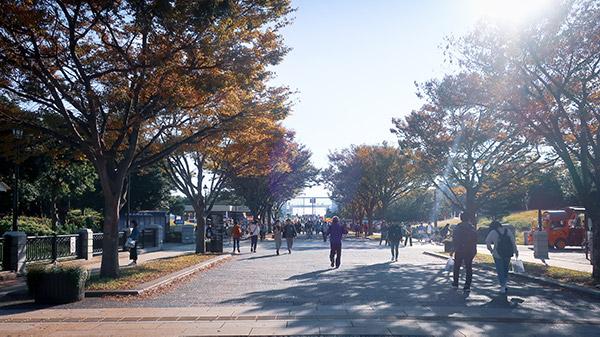 駅前のプチ広場と広い道2
