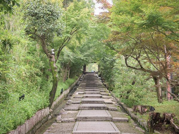 京都小道ねねの道3
