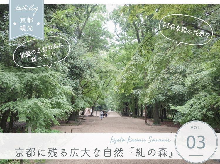 京都に残る広大な森 糺の森さんぽ