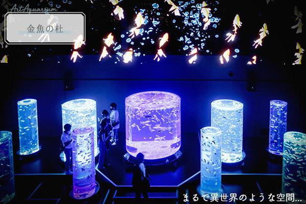 アートアクアリウム美術展展示金魚の杜