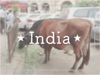 eg5India