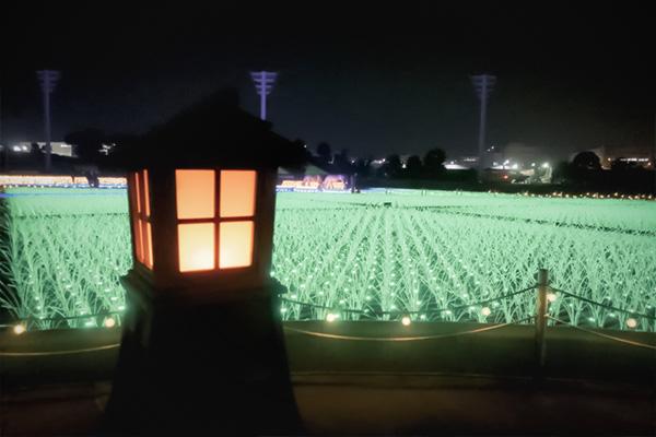 東京メガイルミTHE GENFUKEI