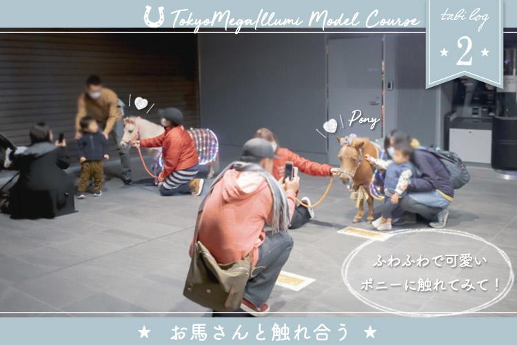 東京メガイルミモデルコース② お馬さんと触れ合う