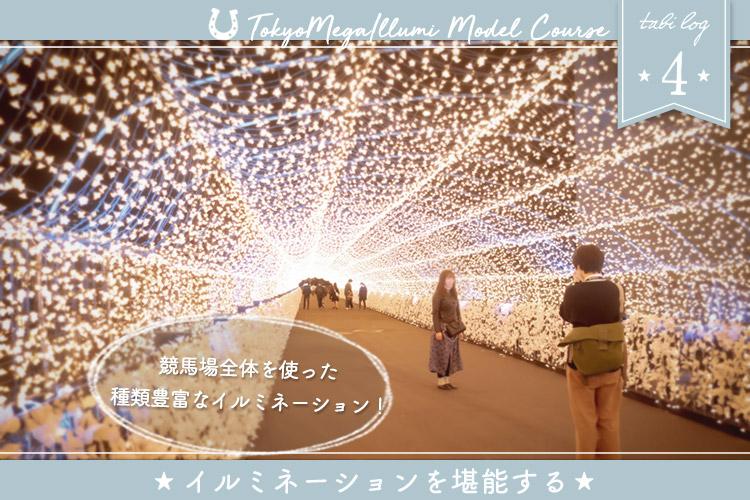 東京メガイルミモデルコース④ イルミネーションを堪能する