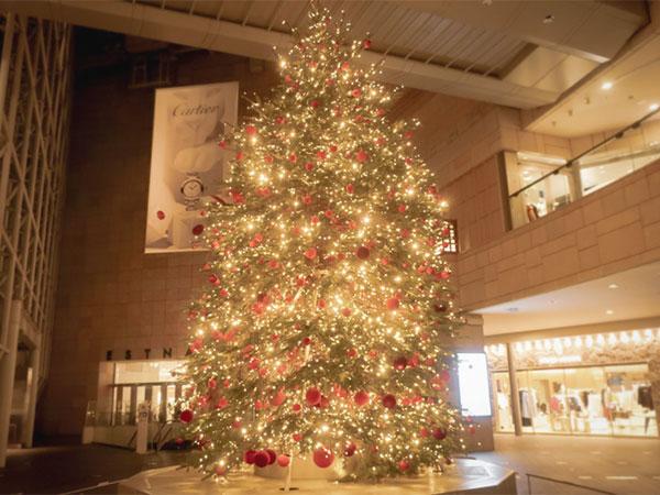 六本木ヒルズクリスマスツリー
