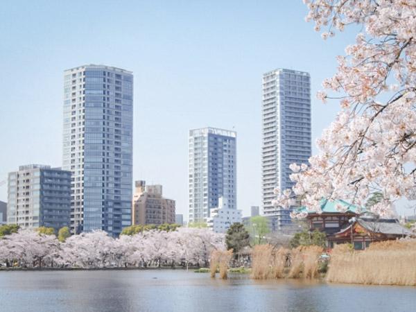 おすすめ東京観光スポット⑥ 上野