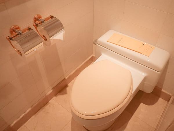 ウォークインクローゼットトイレ
