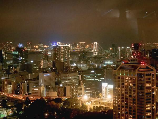 東京タワーから夜景を眺める!2