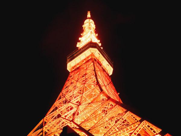 東京タワーから夜景を眺める!